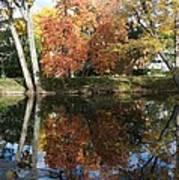 Red Cedar Reflections Art Print