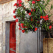 Red In Provence Art Print