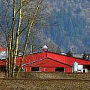 Red Matsqui Barn Art Print