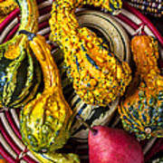 Red Pear And Gourds Art Print