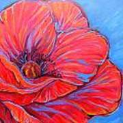 Red Poppy Art Print by Jenn Cunningham