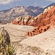 Red Rock Canyon - Keystone Thrust Art Print