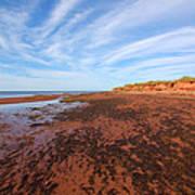Red Sands Low Tide Art Print