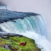 Red Shoes Left By The Falls Art Print