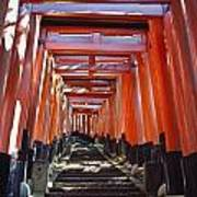 Red Torii Arches Over Steps At Inari Art Print