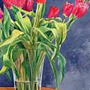 Red Tulips Art Print by Peter Sit