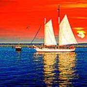 Red White Blue Cape Cod Will Do Art Print