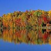 Reflected Autumn Trees In Simon Lake Art Print