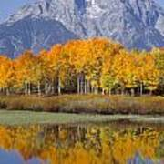Reflection At Oxbow Bend Art Print