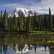 Reflection Lake And Mount Rainier Art Print