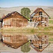 Reflection Of An Old Building Art Print by Donna Greene
