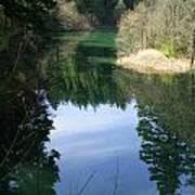 Reflection Pond Art Print