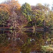 Reflections Of Autumn Art Print by Rod Johnson