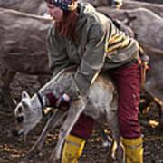 Reindeer Farm Work Art Print