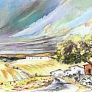 Ribera Del Duero In Spain 13 Art Print