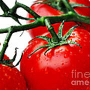 Rich Red Tomatoes Art Print