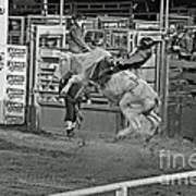 Ride 'em Cowboy Print by Shawn Naranjo