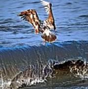Riding The Wave  Art Print by Debra  Miller