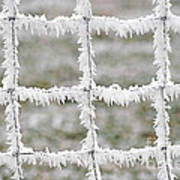 Rime Covered Fence Art Print by Christine Till