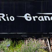 Rio Grande Art Print