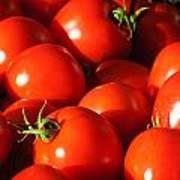 Ripe Tomatoes Art Print