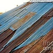 Rippled Roof  Art Print