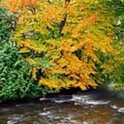 River Camcor In The Fall  Co Offaly Art Print