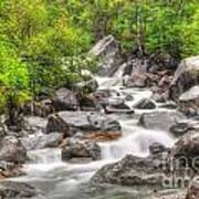River In The Forest Art Print