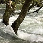 River Manavgat In Flood Art Print
