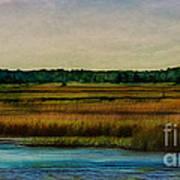 River Of Grass Art Print