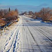Road In Winter Art Print by Gabriela Insuratelu