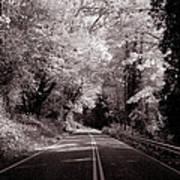 Road Through Autumn - Black And White Art Print