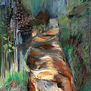 Road To Home Art Print by Susan Hanlon