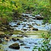 Rock Creek Bed Art Print