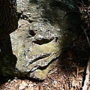 Rock Face Art Print by Joel Deutsch
