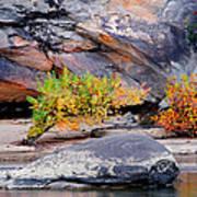 Rock Shrub And Bluff At Cumberland Falls State Park Art Print