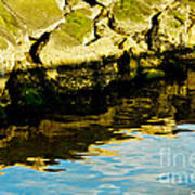 Rocks And Reflections On Ocean Art Print