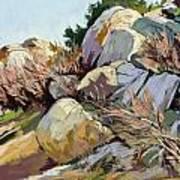 Rocks And Weeds Art Print