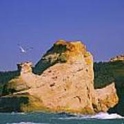 Rocky Coast Of Cape Kiwanda State Art Print