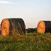 Rolls Of Hay Art Print