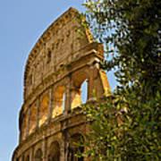 Roman Coliseum Art Print