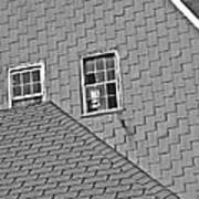 Roof Lines Art Print