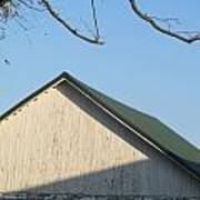 Roofline And Walnut Tree Art Print