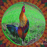 Rooster Colors Art Print