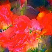 Rose 144 Art Print