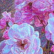 Rose 94 Art Print