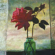 Rose And Rosebud Art Print