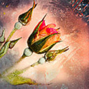 Rose Creation Art Print
