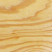 Rough Textured Plywood Grain Art Print