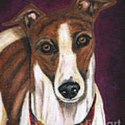 Royalty - Greyhound Painting Print by Michelle Wrighton